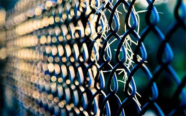 Заборы из сетки