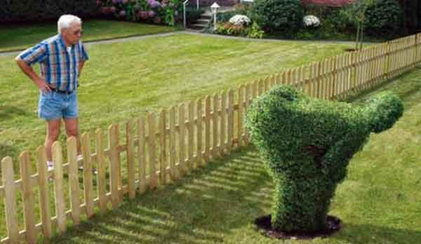 Что скажут соседи на счет забора?